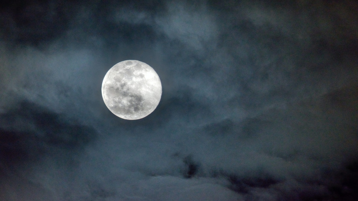 Full Moon in Virgo. Picture by Kevin Bidwell.